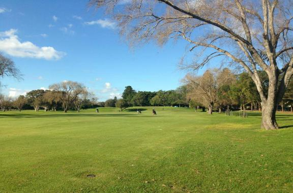 Woollahra Golf Club